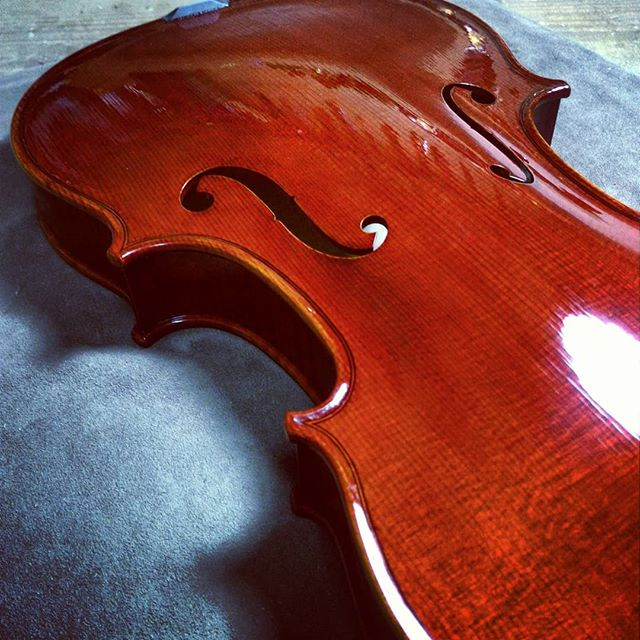 Finishing of violin.#violin #viola #cello #doublebass